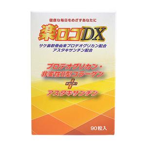 楽ロコDX