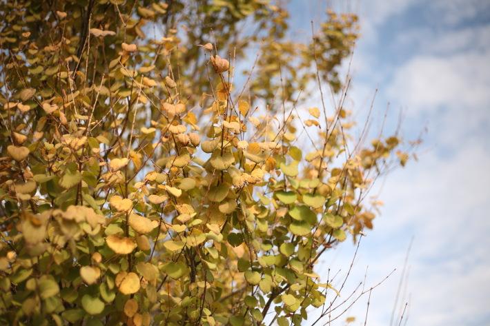 秋冬のスキンケアは「保湿」がポイント